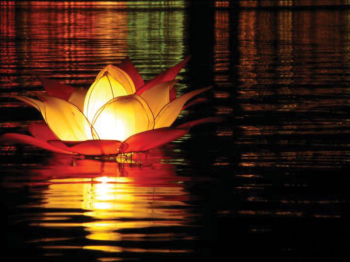 Vesak festival in sri lanka travel