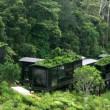 Rainforest Eco Lodge