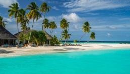 The Maldives Experience