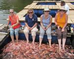 Fish Spa in Sri Lanka